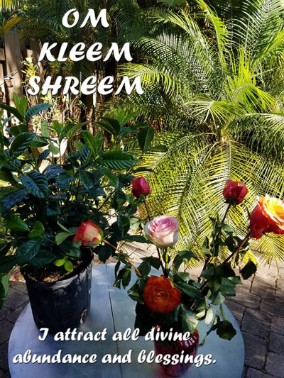 Om Kleem Shreem - I Attract All Divine Blessings - I Am One With God